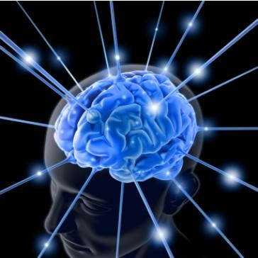 Arquitetura do cérebro audio livro audio livros  audio book audio books  audio-livro  audio-livros