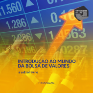 Introdução ao mundo da Bolsa de Valores mp3 audiobook audioboks audiolivro audiolivros
